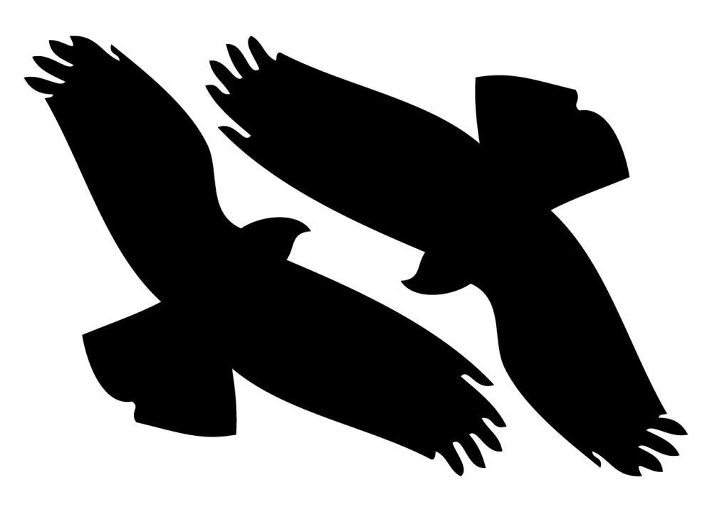 Samolepky siluet dravců v setu na A3 (297x420mm)